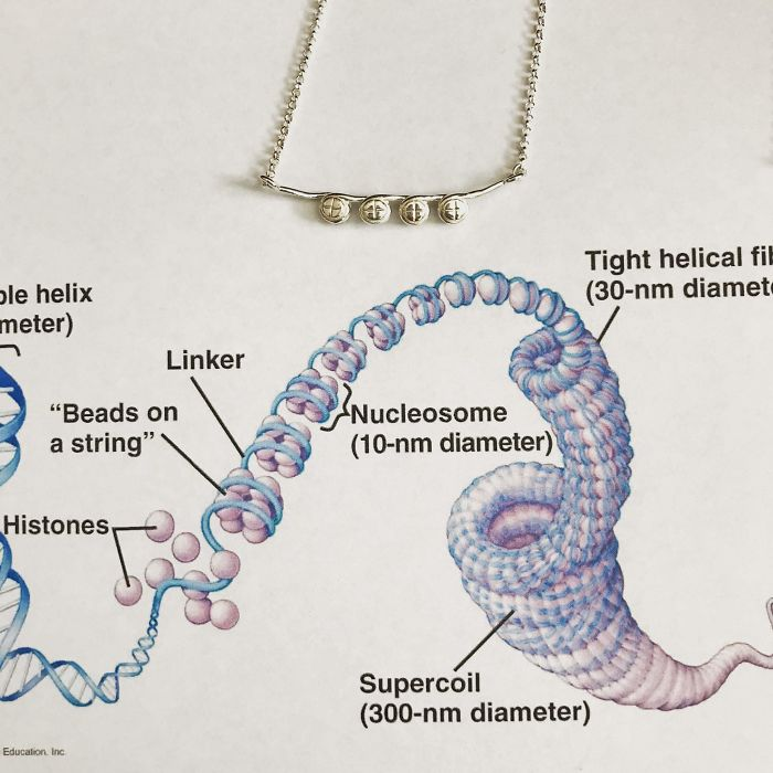 Ribosomes Necklace