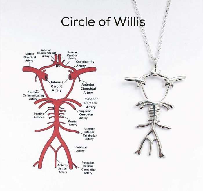 Circle Of Willis Necklace