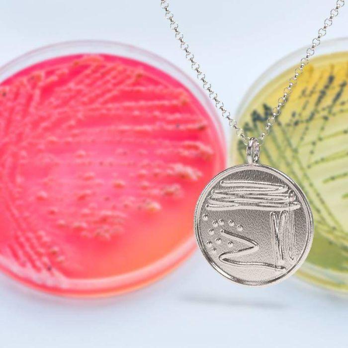 Petri Dish Necklace