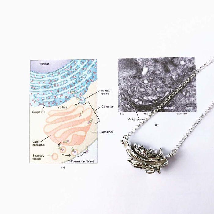 Golgi Apparatus Necklace