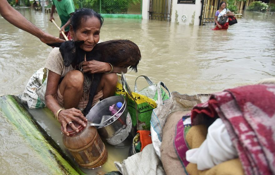 An Indian Woman Holds A Goat While Sitting On A Makeshift Raft In Koliabor Village In Assam