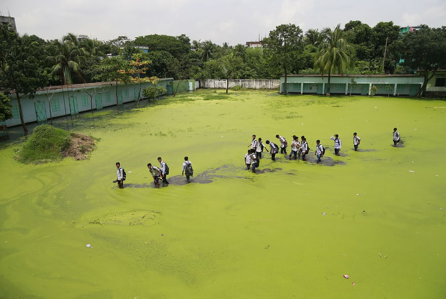 In Demra, Children Walk Through A Flooded Field As They Return Home From School. The Mix Of Rainwater And Toxic Waste From Industries Has Turned The Water Green