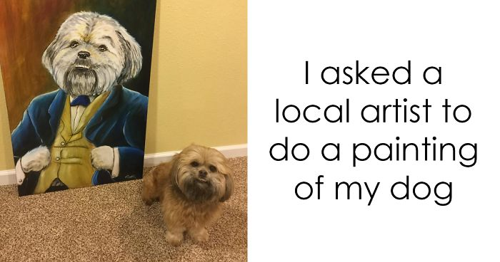 20+ Spoiled Dogs That Live Better Than You