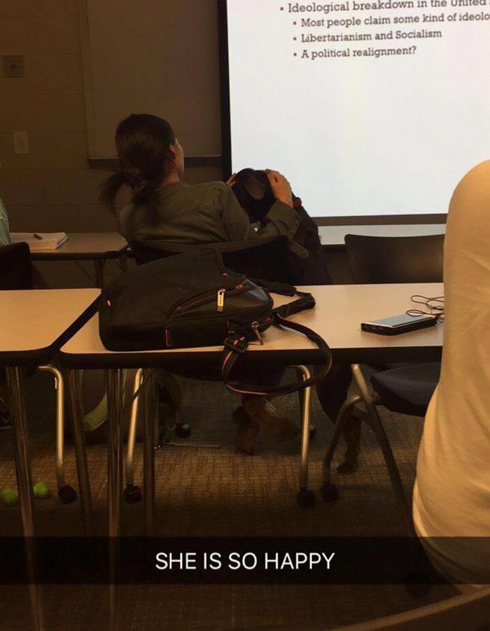 student-professor-dog-hurricane-irma-8