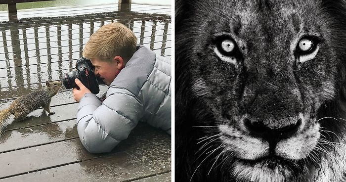 Steve Irwin S Son Is An Award Winning Photographer And These Photos Show Why Bored Panda