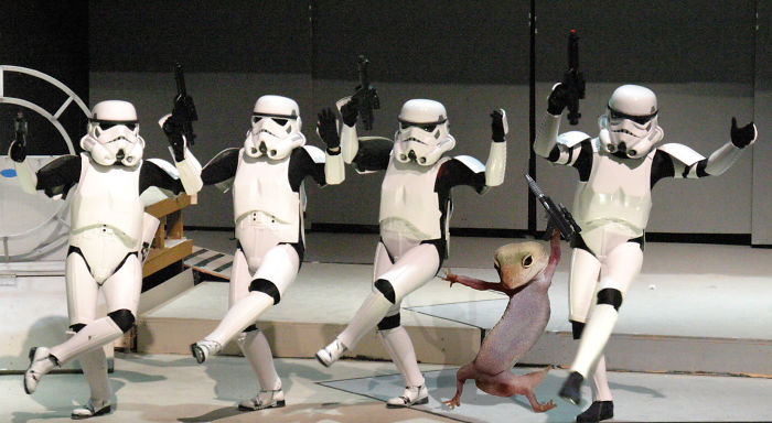 Try Outs For The Dark Side