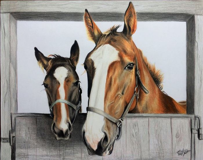 Estonian Artist Captures Personalities Of Horses With Her Realistic Hand-Drawn Art