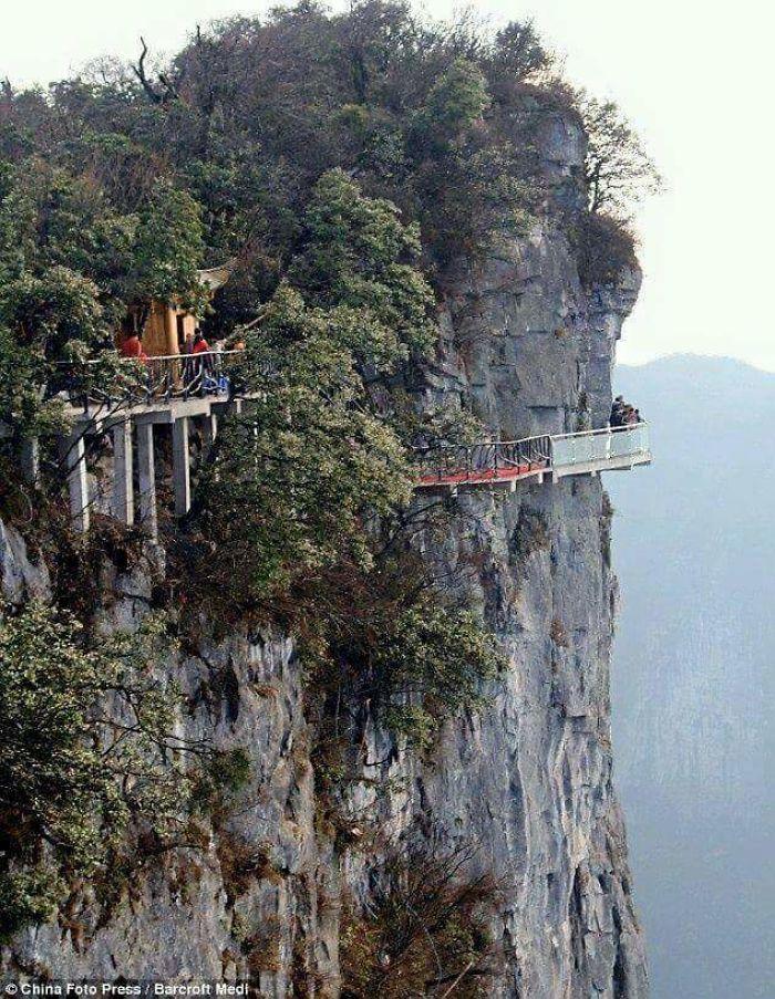 Amazing World Roads