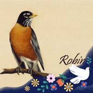 Robin Webster
