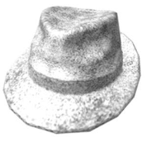 Tinfoil Hatter