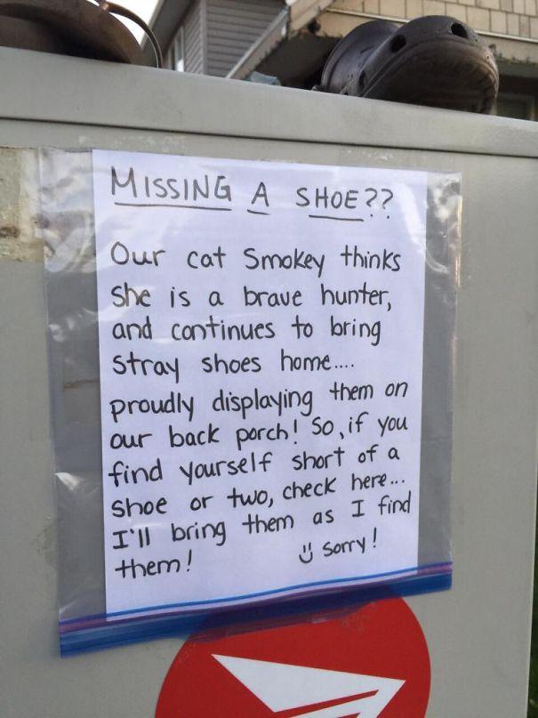 This Cat In My Neighbourhood