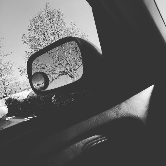 This Tree Lined Up Almost Perfectly With The Tree In My Mirror. The Black And White Made It Fit Even Better