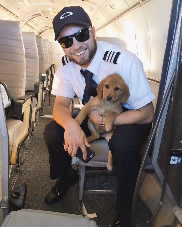 I Had The Cutest Passenger On My Flight Today