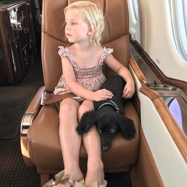 E And Lucie Both Nervous On Takeoff. At Least E Knows How To Comfort Her Puppy. Picture Taken Just As We Went Wheels Up