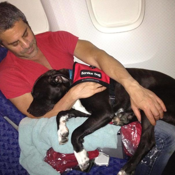 This Is The Time My Daddy And My Other Daddy Martin (Whom I Miss So Much) Brought Me From Los Angeles To New York On The Plane! See, I Was Found On The Means Streets Of South Central Alone And Scared But Somehow, I Found My Way To My Daddies And The Best Life Ever!