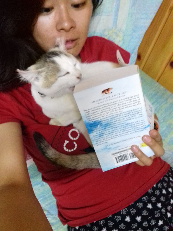 """""""Hooman, Cuddle. No Reading."""" Can't Read Around Her"""