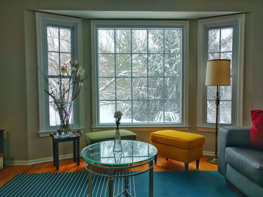 The Four Seasons Through My Living Room