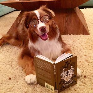 My Bookworm Phase