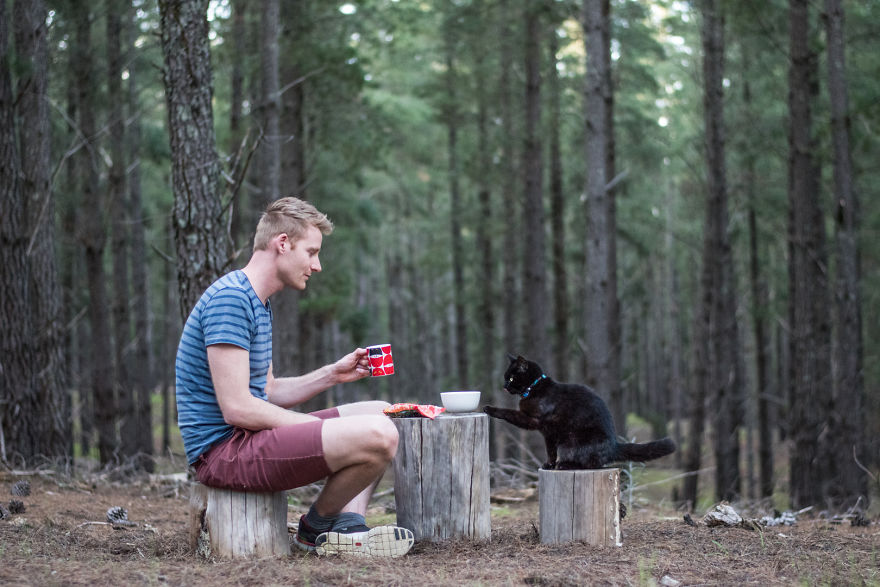 9fd7c51aa4350a I ve been traveling around Australia with my rescue cat Willow in a  campervan for 2