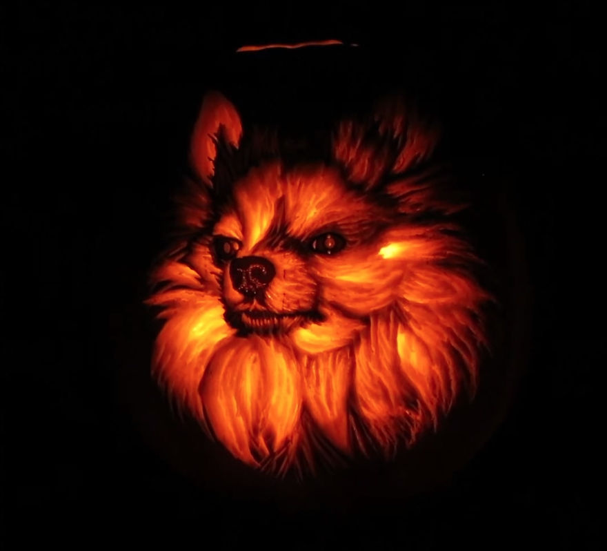 I Carved A Dog-O-Lantern That Looks Like My Pomeranian Sophie