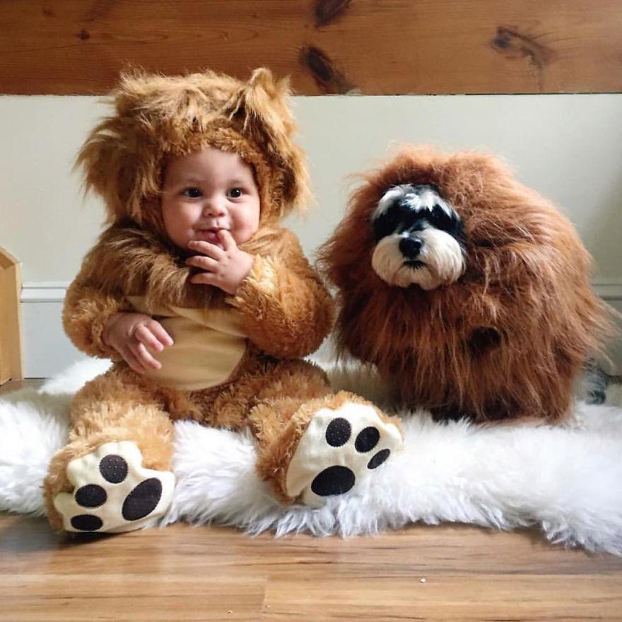 Cutest Lions