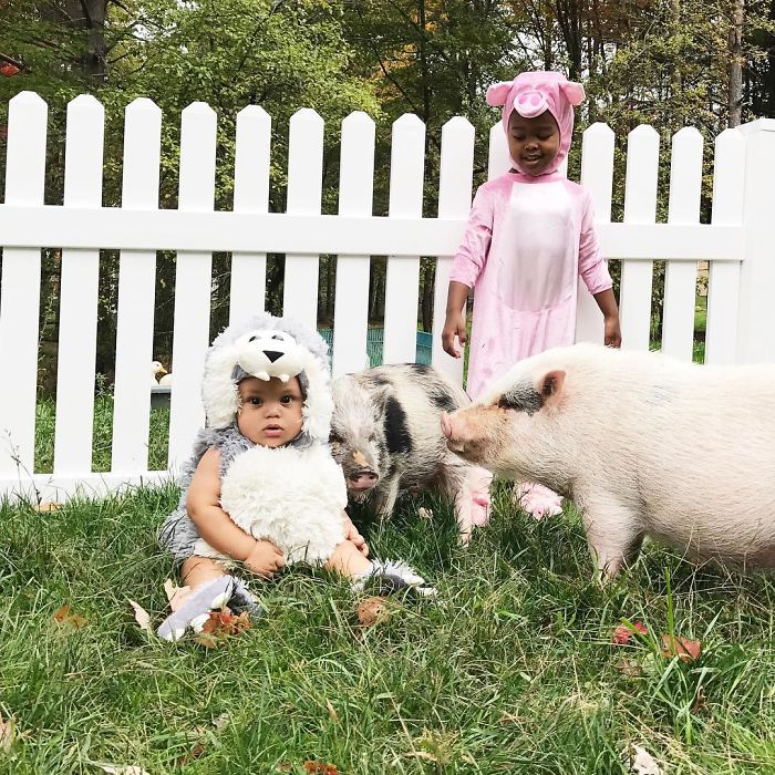 Big Bad Wolf And Three Little Pigs