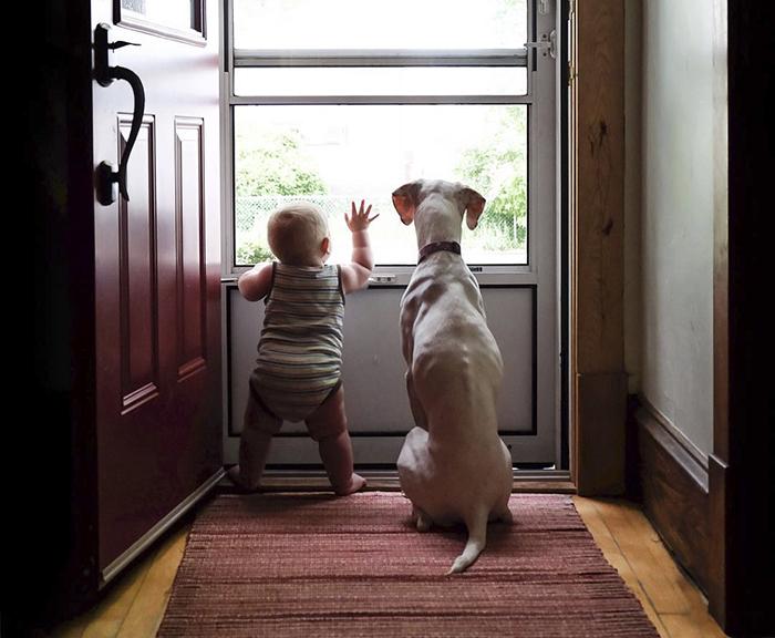 Este perro maltratado teme a todo el mundo menos a este bebé, y sus fotos juntos son adorables