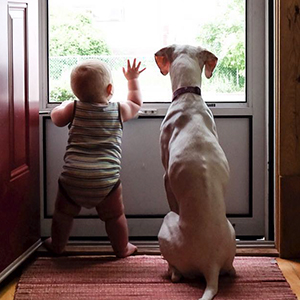 Abused Dog Is Terrified Of Everyone Except This Baby, And Their Pics Are The Sweetest Thing Ever