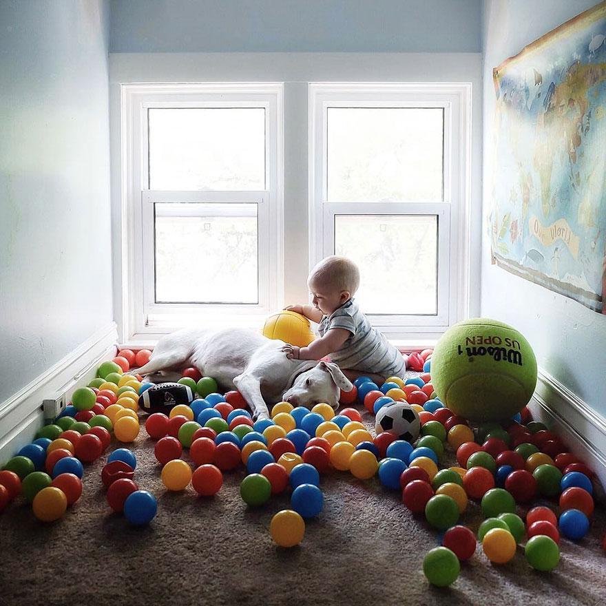 abused-rescue-dog-love-child-nora-elizabeth-spence-36