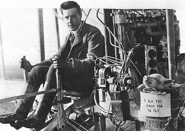 The First Historically Recorded Flight Of A Pig Took Place On At Leysdown In Kent (Great Britain) On November 4th, 1909