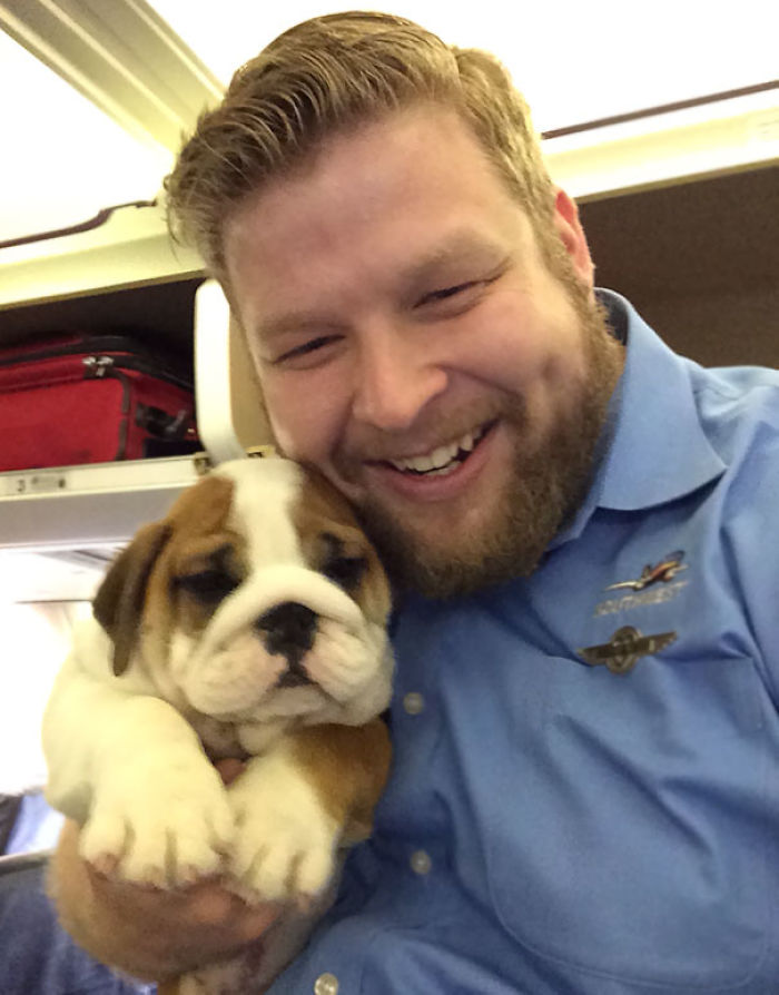 This Little Guy Was The Most Popular Passenger On The Plane Today. The Puppy, Not Me