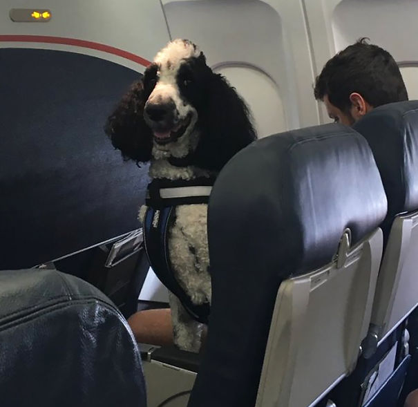 My Dad Just Sent Me This Picture From His Plane...