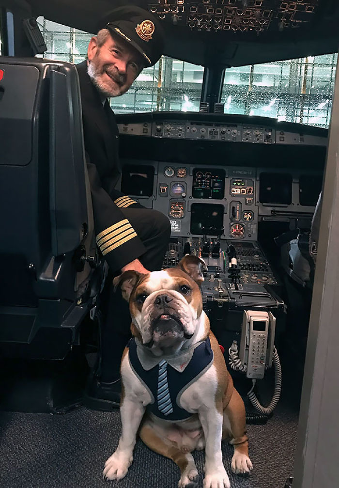 Bentley Got To Meet The Captain After Our Flight Home Last Night