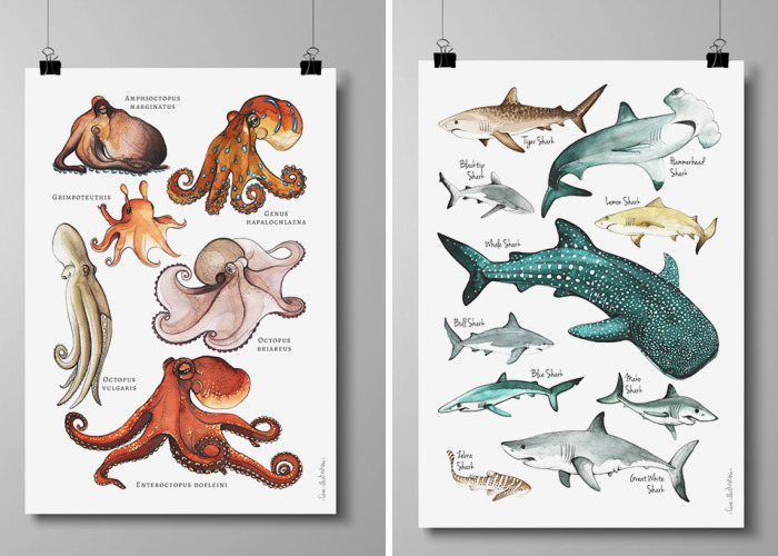 I Draw Animal Posters Using Pencils And Watercolors