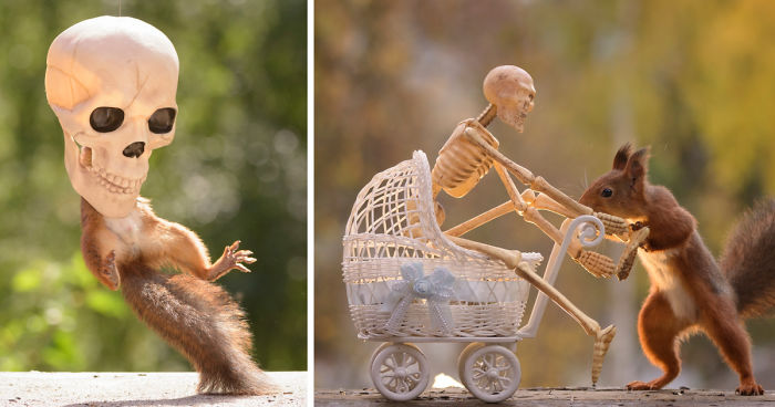 Here's How Squirrels Celebrate Halloween