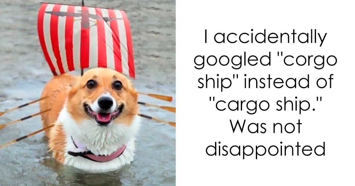 10+ Times People Accidentally Googled The Wrong Thing, And The Results Were Hilarious