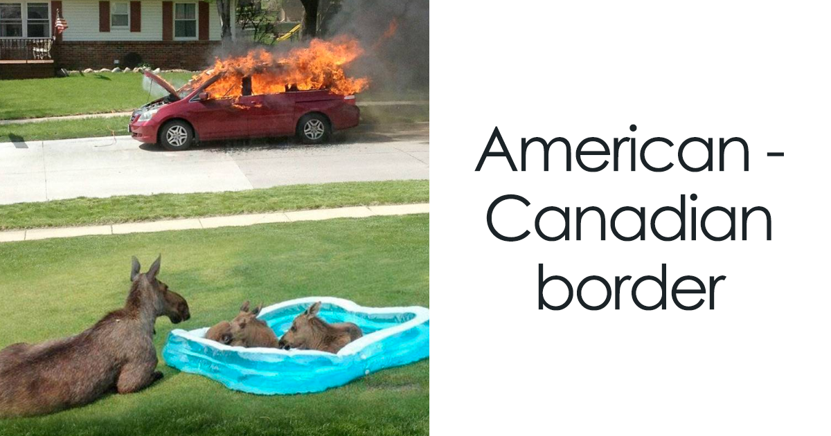 25 Times Canada Roasted America So Well You Can\'t Even Be Mad ...
