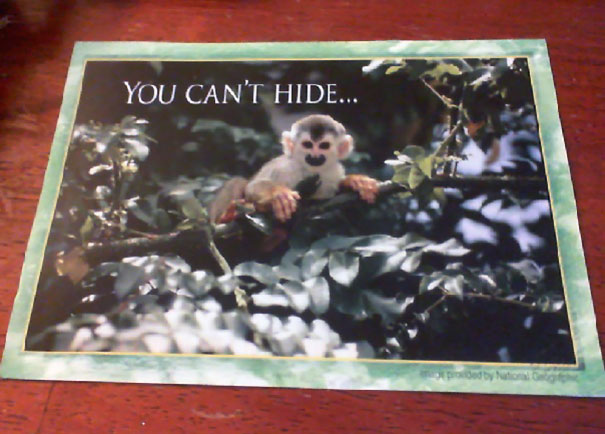 My Husband Got This Postcard In The Mail From His Dentist. Time To Find A New Dentist