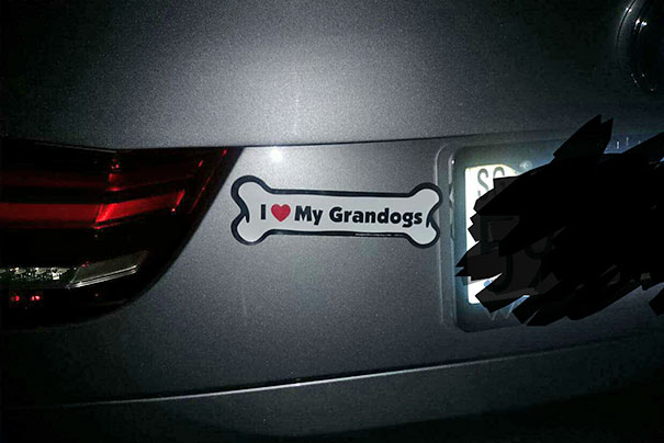My Mother-In-Law Said She Gave Up On Grandkids