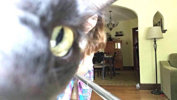 My Cat Ruining My Niece's Selfie…