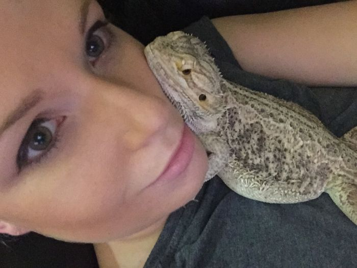 My Bearded Dragon Has Always Assumed My Face Was A Pillow.