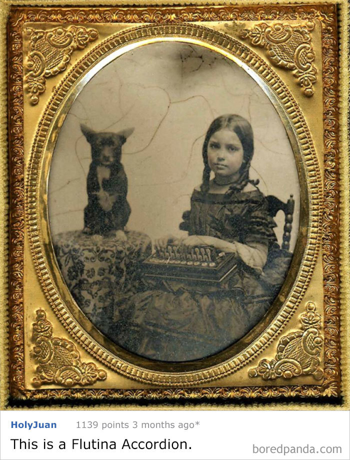 This Little Girl Was Photographed In The 1860's With Her Dog. What Is She Holding In Her Lap?