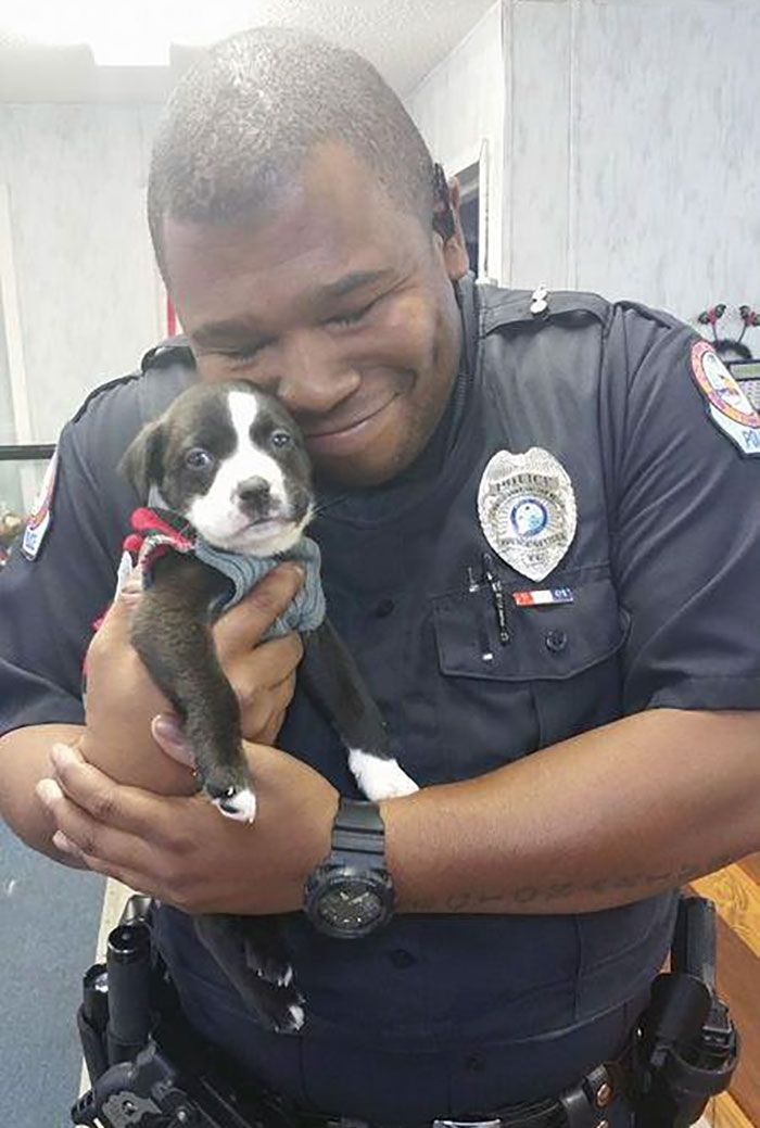 Officer Montgomery Giving His New Potential Family Member Some Love