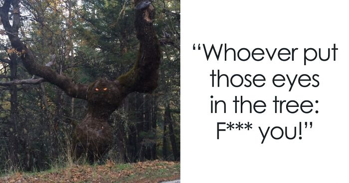 37 Trees That Look Like Something Else And Will Make You Look Twice