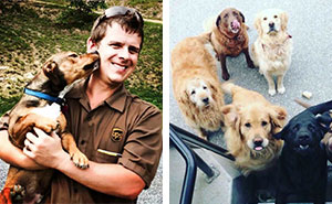 Turns Out, UPS Drivers Have A Facebook Group About Dogs They Meet On Their Routes, And It Will Make Your Day
