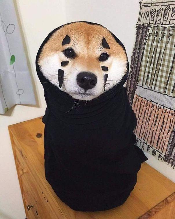 No-Face Doggo