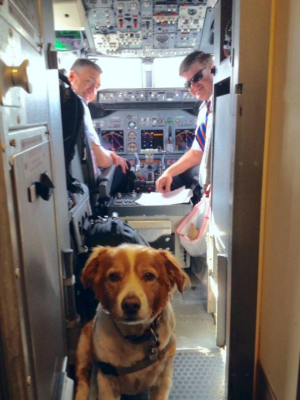Jake's On A Plane