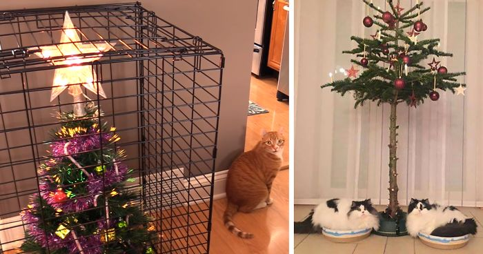 Cat Proof Christmas Tree.40 Genius People Who Found A Way To Protect Their Christmas