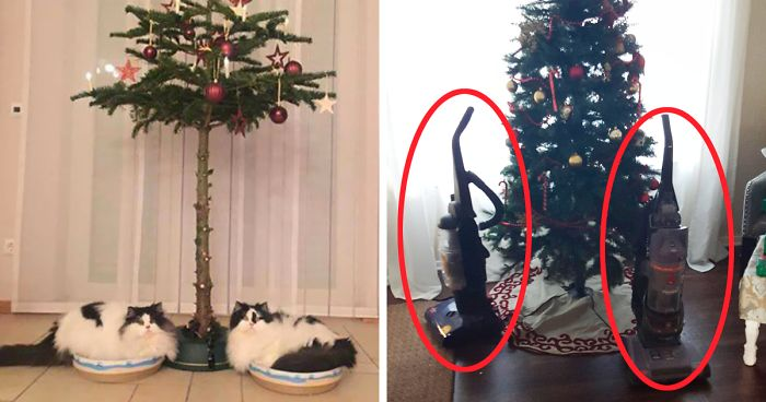 15 genius people who found a way to protect their christmas trees from asshole cats and dogs