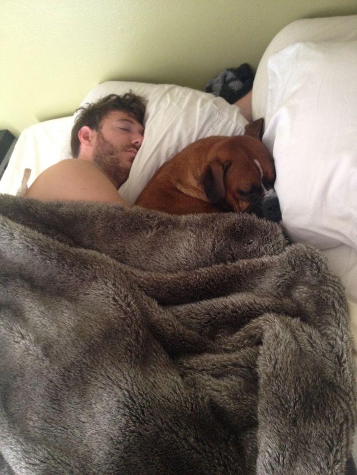 Me fui a trabajar, y se me olvidó el móvil. Solo tardé 10 minutos en volver y esta perra ya estaba en la cama con mi novio